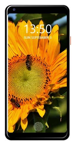 Nokia Maze SE